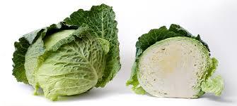 Cabbage G