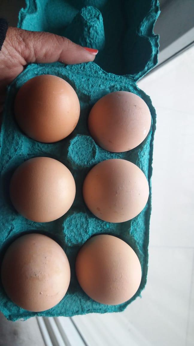Kadaknath Eggs