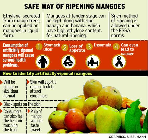 Safe Ripening Process