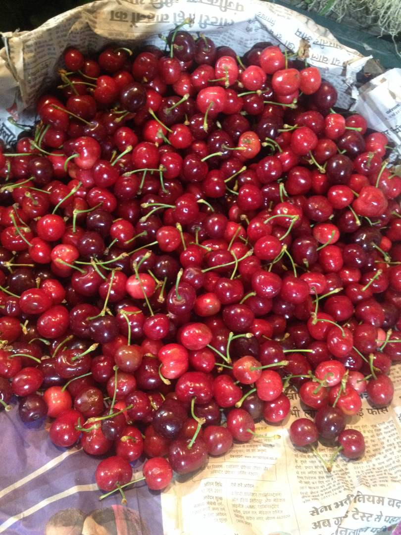 Himachal Cherry